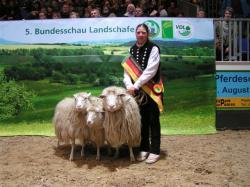 bundesschau_landschafe_2014wuesting_2013