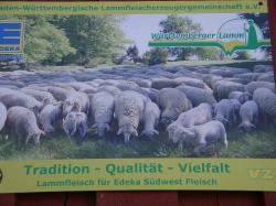 Lehrfahrt nach Baden-Württemberg_34