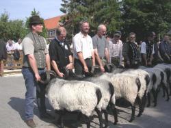 Müden 2005