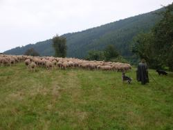 Lehrfahrt nach Baden-Württemberg_40