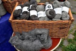 Wollvermarktung-Eigen-oder-Nordwolle