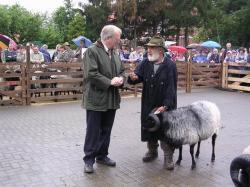 Müden 2004